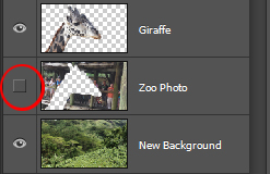 Layers with foreground object on top and old background layer turned off