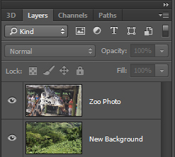 Photoshop layers are setup with the zoo photo on top of the replacement background